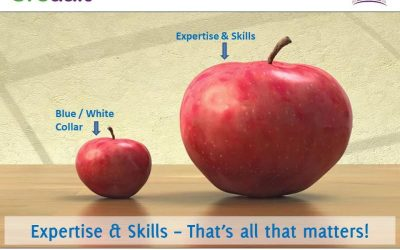 Expertise & Skills – That's all that matters!